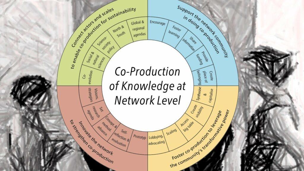 The network compass by Flurina Schneider